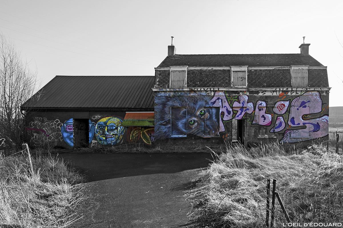 Street Art, maison abandonnée, Doel