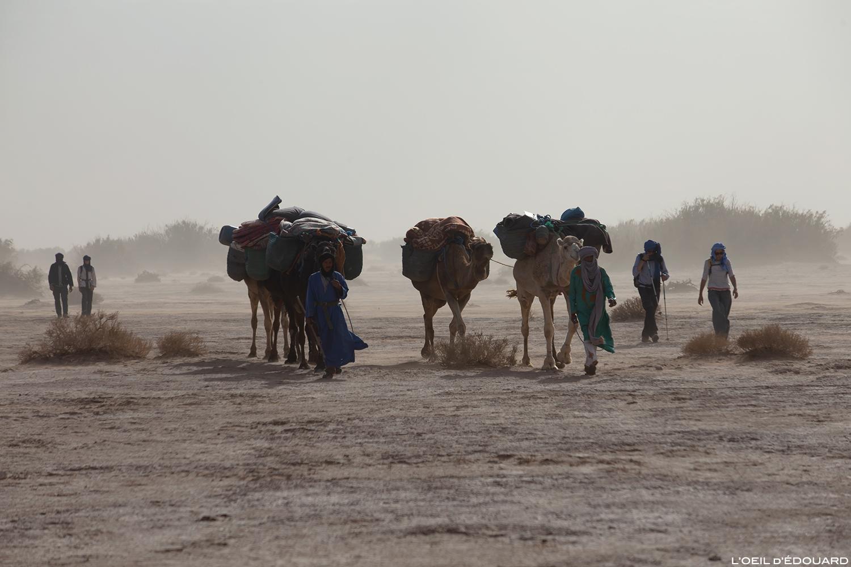 Caravane nomade sahraouie dans la tempête de sable dans le désert du Maroc © L\'Oeil d\'Édouard - Tous droits réservés