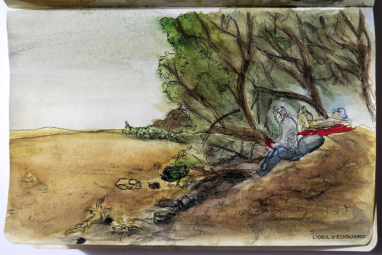 Bivouac à l\'ombre des tamaris dans le désert du Maroc - Dessin et aquarelle © L\'Oeil d\'Édouard - Tous droits réservés